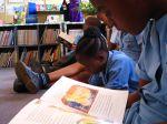 thumb_BotswanaPrimarySchoolLibrary