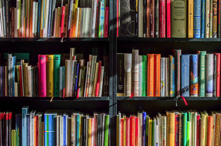 Here are ways some African countries celebrate books
