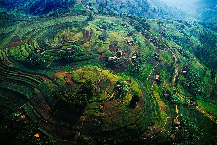 COVID Updates – Uganda